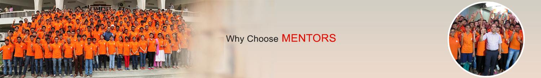Why Mentors